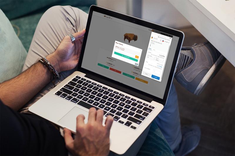Platform & Token Launch