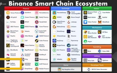 Buffalo Finance on the Binance Smart Chain Ecosystem Map